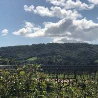 Photo taken at Blue Victorian Winery by Shirin J. on 3/23/2018