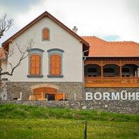 Das Foto wurde bei Istvándy Borműhely von WeLoveBalaton am 6/19/2015 aufgenommen