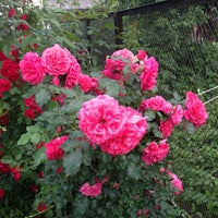 Photo taken at Лесной by Галина🌺 on 6/28/2013