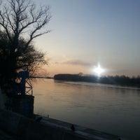 3/20/2013 tarihinde Mehmet C.ziyaretçi tarafından Meriç Nehri'de çekilen fotoğraf