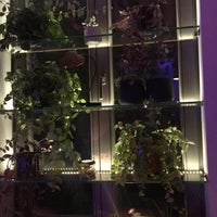 Снимок сделан в Jasmine Gastro Bar пользователем velislava p. 12/9/2017