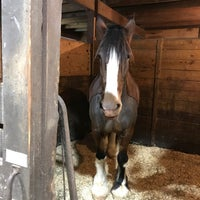Photo taken at Morven Park Equestrian Center by Heather M. on 12/8/2017