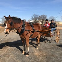 Photo taken at Morven Park Equestrian Center by Heather M. on 1/26/2018
