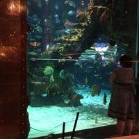 Photo taken at Mermaid Lounge by Eeks R. on 5/25/2014