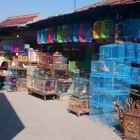 Photo taken at Pasar Burung Kota Malang by Khairunnisa A. on 5/30/2014