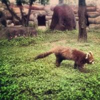 Photo taken at Tennoji Zoo by Daniel F. on 5/31/2013