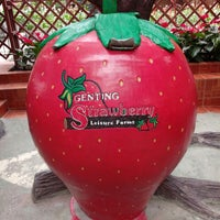 Foto diambil di Genting Strawberry Leisure Farm oleh safwanaa s. pada 12/5/2017