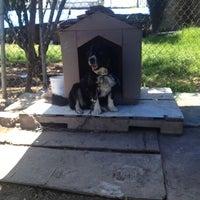 Photo taken at la esperanza canina by Claudia P. on 7/12/2014