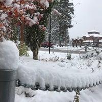 Foto scattata a Town of Banff da Zuzana U. il 10/3/2018