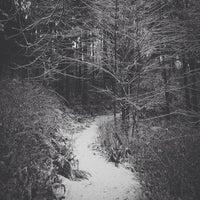 Das Foto wurde bei Llandover Woods von Will F. am 2/10/2014 aufgenommen