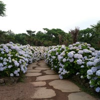 Photo taken at Camellia Hill by EunYoung C. on 6/23/2013