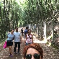 8/26/2018 tarihinde Lale Y.ziyaretçi tarafından Polenezköy Yürüyüş Parkuru'de çekilen fotoğraf