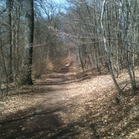Photo taken at Lampennester Wald by Frank R. on 4/14/2013