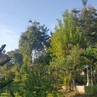 Photo taken at Jardin Maria Clara Lobregat by Cedrick Z. on 5/27/2017