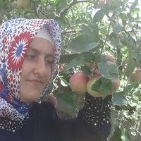 Photo taken at şamdanli ciftligi by Sevim U. on 8/15/2013