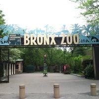 Photo prise au Bronx Zoo par Hunter H. le5/13/2013