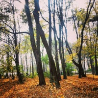 Photo taken at Parcul Mihai Eminescu by Bianca A. on 10/25/2013