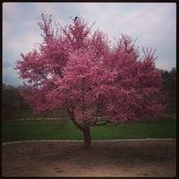 Foto tirada no(a) Arnold Arboretum por Melissa L. em 4/18/2013