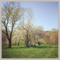 Photo taken at Arnold Arboretum by Melissa L. on 4/28/2013