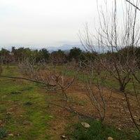 Photo taken at Tarla by Ali Ş. on 1/16/2014