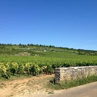 Photo taken at Caveau de Puligny-Montrachet by Boris G. on 8/15/2013