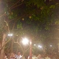 Foto scattata a Da Paolino da Verna il 9/10/2016