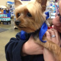 Photo taken at PetSmart by David K. on 1/20/2013