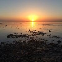 Photo taken at Набережная Финского залива by Александр Д. on 6/4/2014