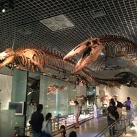 Photo prise au National Museum of Nature and Science par むさしのみかん M. le5/19/2013