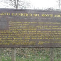 Photo taken at Parco faunistico del Monte Amiata by Gianluca F. on 4/9/2013