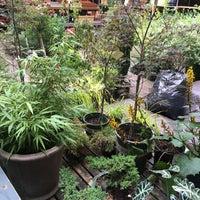 ... Photo Taken At Botanica Garden Center By Eva W. On 7/7/2016 ...