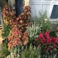 ... Photo Taken At Botanica Garden Center By Eva W. On 8/26/2016 ...
