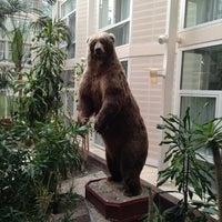 Photo taken at Radisson Blu Royal Garden Hotel by Mikhail K. on 8/8/2013