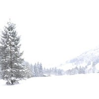 Photo taken at Skigebiet Maria Alm - Hintermoos / Ski amadé by Annabelle A. on 1/25/2014