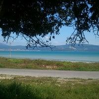 4/17/2013にSamed Ö.がADÜ Plajiで撮った写真