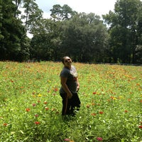 Photo taken at Boone Hall Farms by May E. on 8/24/2013