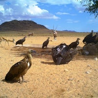 Photo taken at Gondwana Travel Centre by Mirja S. on 4/4/2013