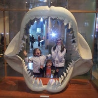 Photo taken at North Carolina Museum of Natural Sciences by Tom T. on 4/5/2013