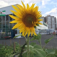 Снимок сделан в Нова Лінія пользователем Alyona T. 7/14/2014