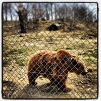 Photo taken at Space Farms Zoo & Museum by Johnathan D. on 4/7/2013