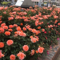 Photo taken at フードガーデン 与野本町駅店 by 一茂 前. on 5/7/2018