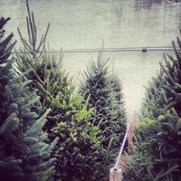 Photo taken at Kings County Nurseries by Dominique H. on 12/8/2013