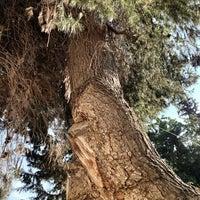 Photo taken at בית בטבע by sagit t. on 5/16/2013