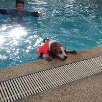 Foto tomada en Sa-by-jai Dog Swimming Pool por Giftza J. el 6/20/2015