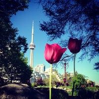 5/26/2013 tarihinde Carolina S.ziyaretçi tarafından Toronto Music Garden'de çekilen fotoğraf
