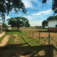 Foto tirada no(a) Anhanguera - Medicina Veterinária por Marco André A. em 3/31/2015