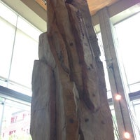 Photo taken at REI by Peter B. on 6/1/2013