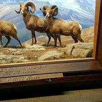 Photo prise au Hall of North American Mammals par Jatushan N. le10/9/2016