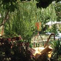Photo taken at Adrasan Deniz Otel Restorant&Bahçe by Esra B. on 8/4/2014