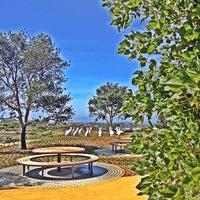 Newport Beach Civic Center Dog Park